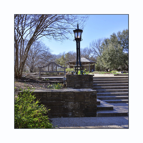 botanicgardens fortworth texas gardens lamps benches trees plants bushes flowers walks parks gazebos metroplex dfw cowtown landscapes nature