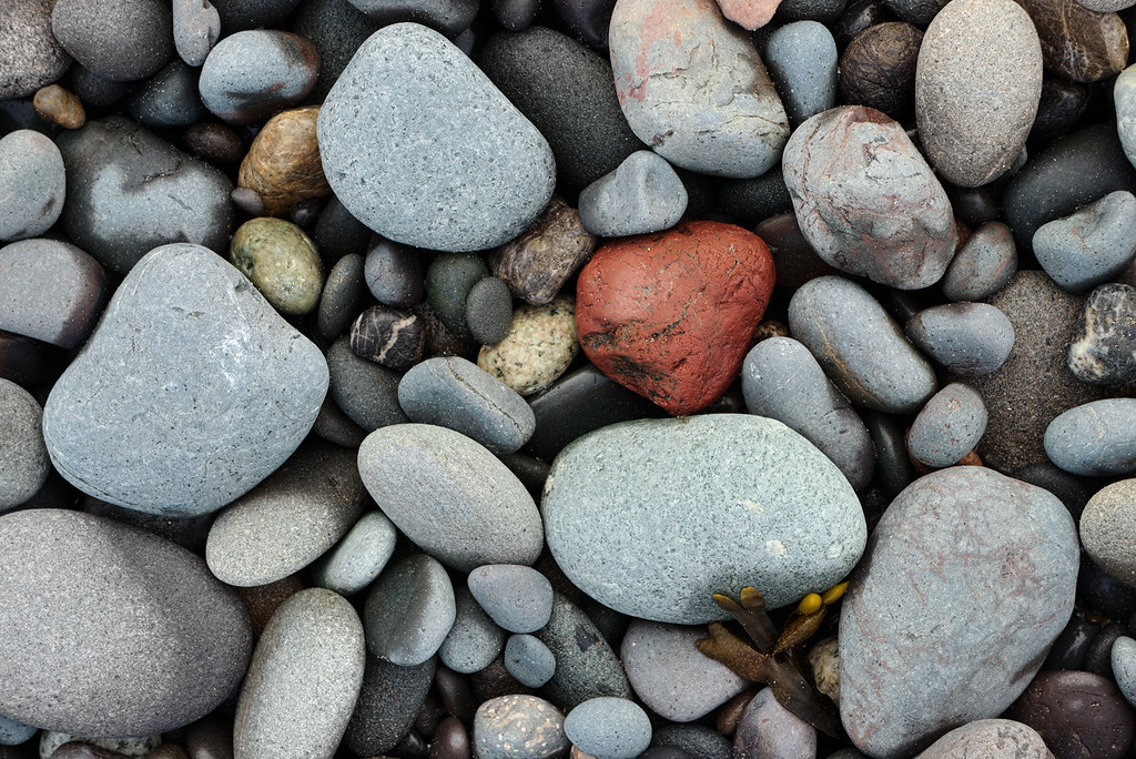 Rocks on Rialto Beach in Olympic National Park in Washington