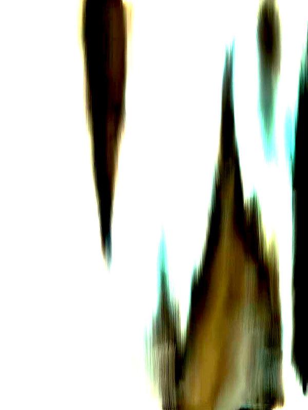 image019a