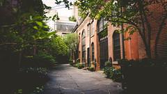 Midtown Garden
