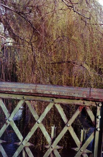 caerdydd bridge