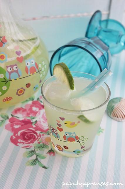 limonlu kavun suyu (5)