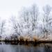 vlietland freezing cold by tvdijk19