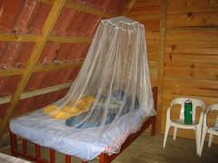 infant bed(0.0), furniture(1.0), mosquito net(1.0), room(1.0), bed(1.0), interior design(1.0),
