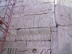 Egypt(172)