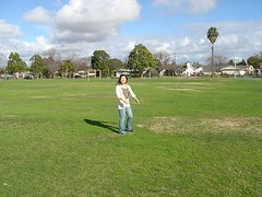 pitch and putt(0.0), sport venue(0.0), cricket(0.0), sports(0.0), baseball field(0.0), golf club(0.0), golf(0.0), golf course(0.0), ball game(0.0), stadium(0.0), field(1.0), grass(1.0), outdoor recreation(1.0), lawn(1.0),