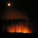 Image Result For Alabama Moon Full