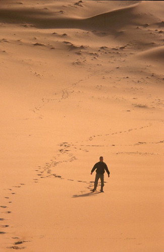lost in the desert 10 astonishing desert survival tales alan boyle january 16, 2014 share 73 stumble 190 tweet  rather than in out the open where it would be lost .
