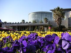 Floral Museum