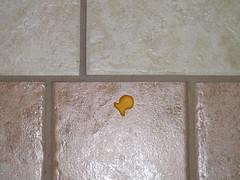 Goldfish down!