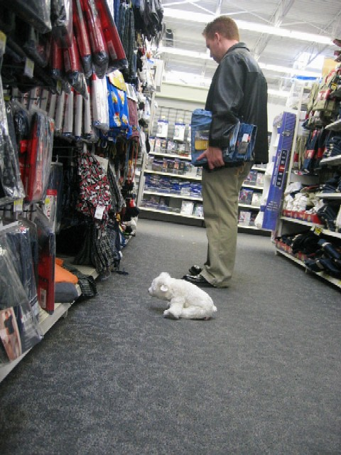 louie helping Mark pick out sweat pants