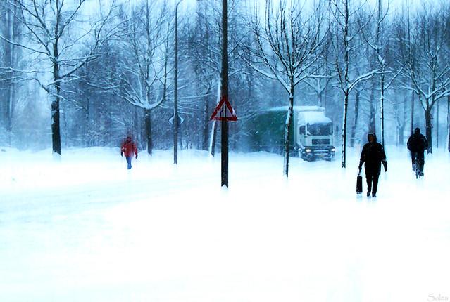 Winter in spring #4