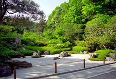明月院の枯山水 (Japanese Rock Garden in Meigetsuin)