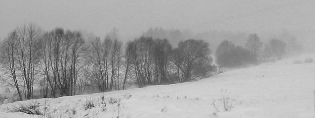 Snow Storm in Latvia, Canon POWERSHOT A10