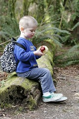 nick eating an apple on a mossy log