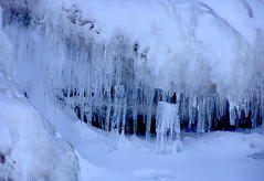 ice cave(0.0), snow(0.0), winter storm(0.0), blizzard(0.0), winter(1.0), ice(1.0), icicle(1.0), freezing(1.0),