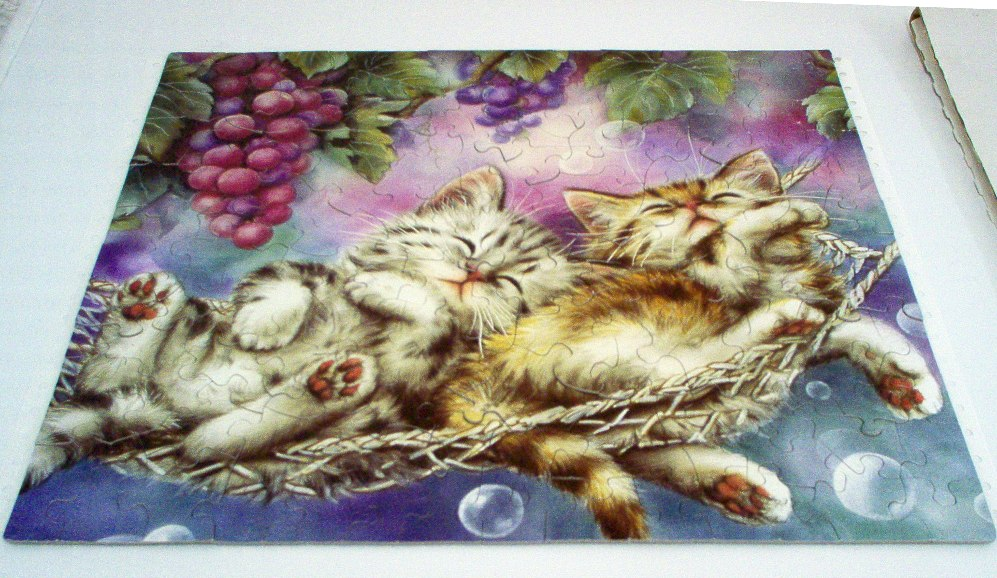 Cute as a Kitten - Two in a Hammock