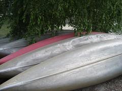 Canoes at Cranbrook