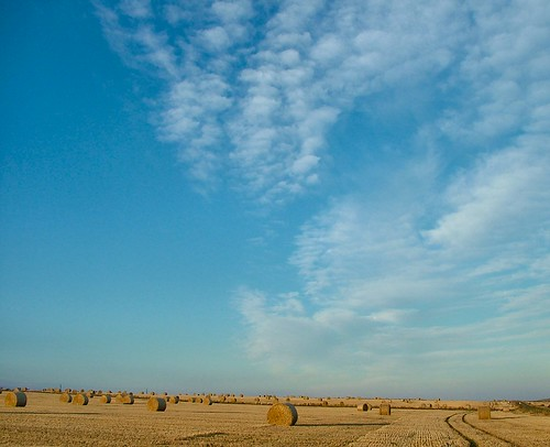 Bales and Sky