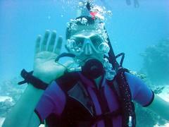 Dicky scuba dives