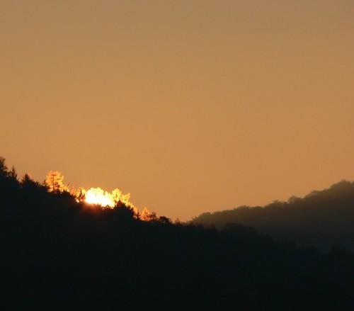 sunrise dusk tree sky geolat49557 geolon11332 geotagged ocher brown sun glow skyline illumination rothenberg schnaittach germany franken franconia 15fav loveit themesilhouetted