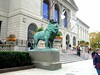 Art Institute Lions by Interstate Girl