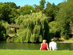 Dos personas de espalda sentados en un parque