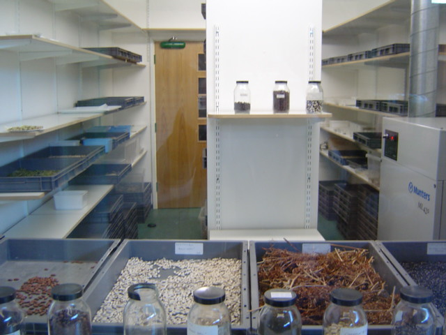 HSL seed drying room