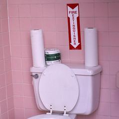 toilet, room, plumbing fixture, toilet seat, bidet,