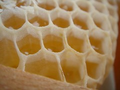 pattern, honeycomb, produce, dish, design,