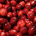 Cranberry Revival Before the Boiling