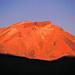 In the Chilean Altiplano