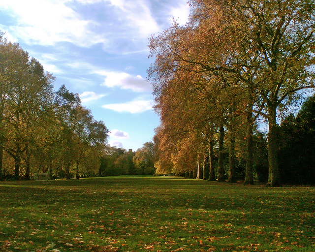 Autumn colours, Hyde Park