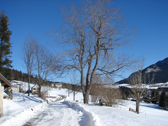 Winter beauty in Vercors