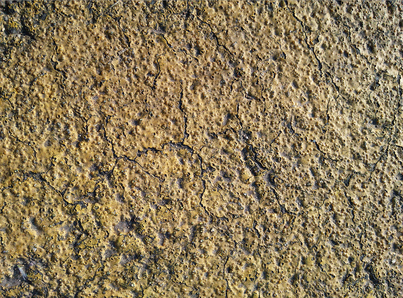 asphalt-texture-2015-06-12-3000px_texturepalace_02
