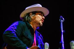 Wilco-2015-0007.jpg