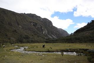 Walking to Laguana 69, Peru.