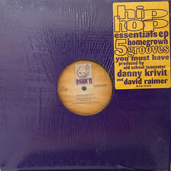 DANNY KRIVIT AND DAVID RAIMER:HIP HOP ESSENTIALS(JACKET A)