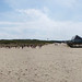 panorama Texel by Stan de Haas Photography