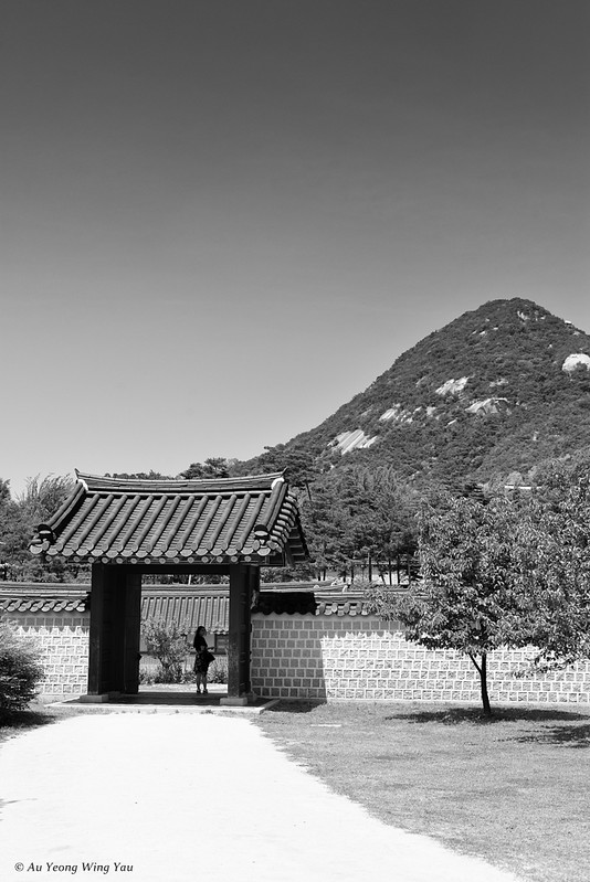 Visions of Gyeongbokgung- Palace Path Leading To The Mountains