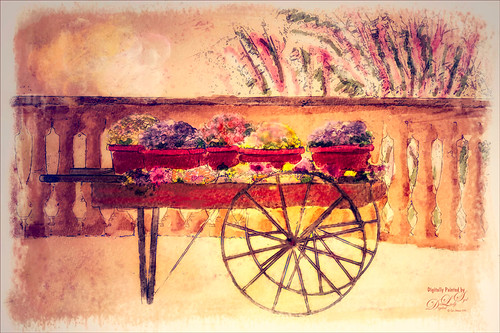 Image of a flower cart at SeaWorld Orlando