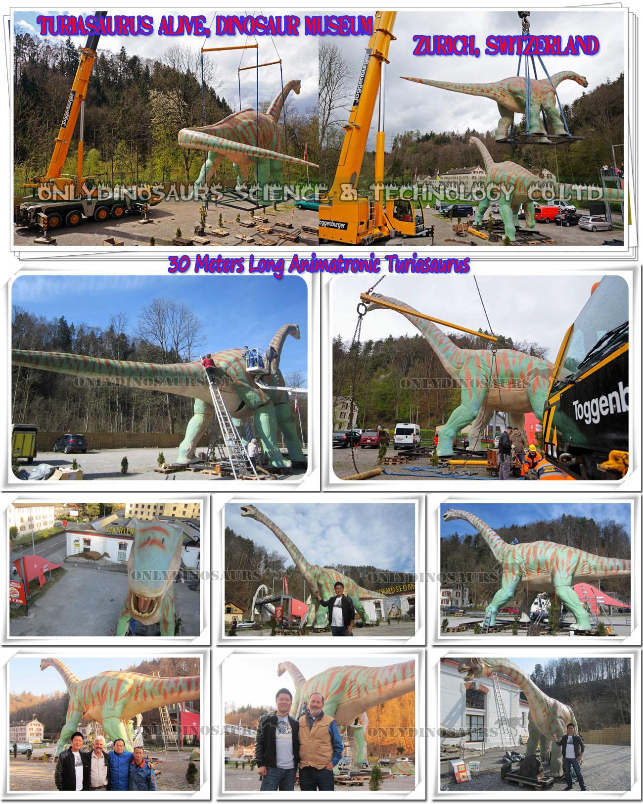 Installing Animatronic Turiasaurus