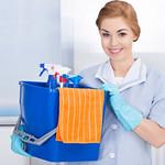 moratoria jubilacion Empleada Domestica