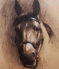 cavalo_giz