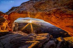 245 - Mesa Arch Sunburst