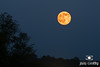 July Thunder Moon in Hocking Hills by Jim Crotty