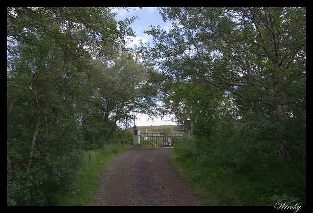 Camino en Península Höfdi