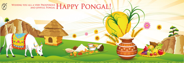 pongal festival essay in english Your home teacher assistant for students the harvest festival is named pongal 10 lines on makar sankranti in english sankranti festival essay.
