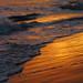 Waves of freedom by Robyn Hooz