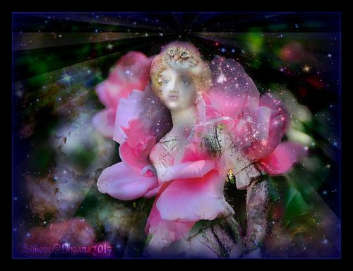 La Déesse Dhyana est née- Gooddness Dhyana is born